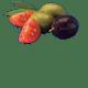 Italienische Tomaten, schwarze Oliven, grüne Oliven, natives Olivenöl extra 1%