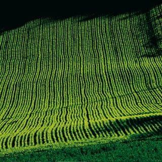 sustainability - rolling green field
