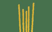 Pâtes longues