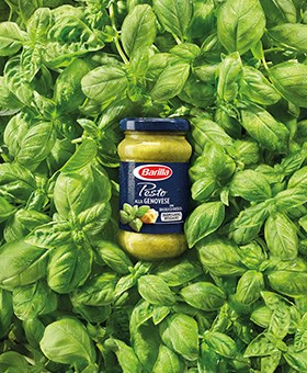 Pesto alla Genovese Neu