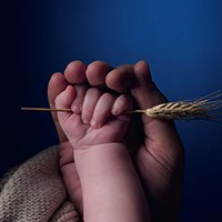 adult and baby hands holding wheat