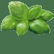 Ingredienti Pesto Genovese