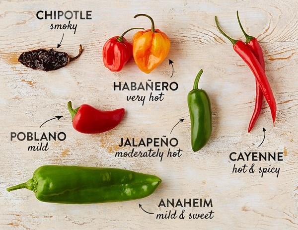 Various Chili Peppers to use for cooking with Pasta