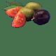 pomodoro italiano olive nere verdi olio extravergine di oliva
